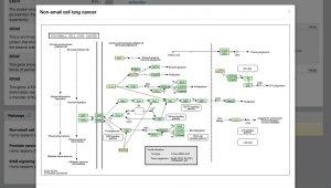 Pathway Topology Analysis